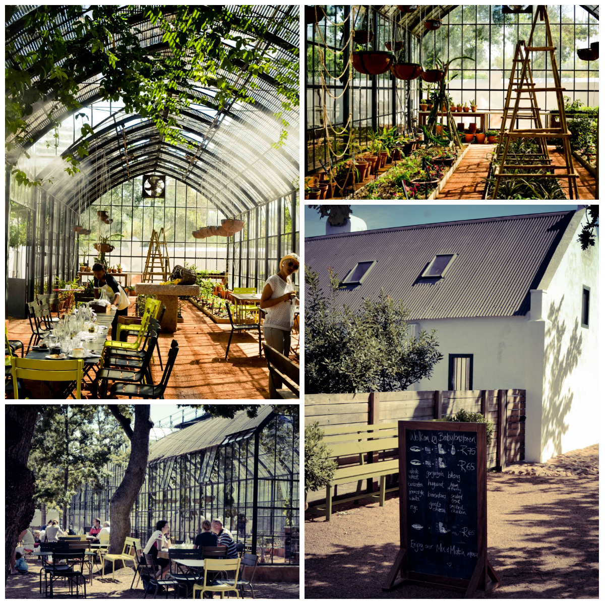 Babel Greenhouse Babylonstoren restaurant review