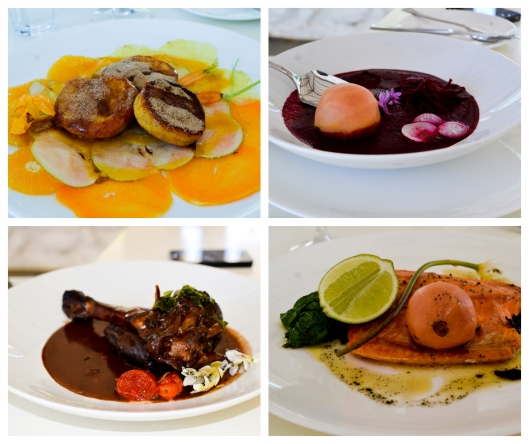 Clockwise: Orange - pumpkin fritters with fruit and veg carpaccio, cinnamon sugar & lavender vinaigrette ; Red - Spicy beetroot tom yum soup with poached guava ; Lightly smoked Franschhoek trout with guava paste, burnt sage butter & wilted greens ; Slow cooked lamb shank marinated in harissa & buttermilk served with lebanese oregano & wild mountain garlic